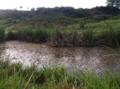 Pond Pakistan.png