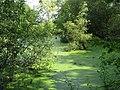 Pond near Wat Stock - geograph.org.uk - 228437.jpg