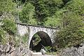 Ponte Sassalto 030514.jpg