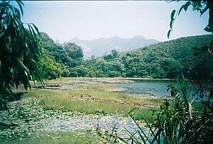 Pookode Lake - Image: Pookkottu lake summer