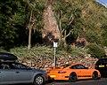 Porsche & Palms Torquay (14645743689).jpg