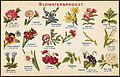 Postkort Blomstersproget.jpg