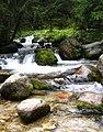 Potok w Tatrach.jpg
