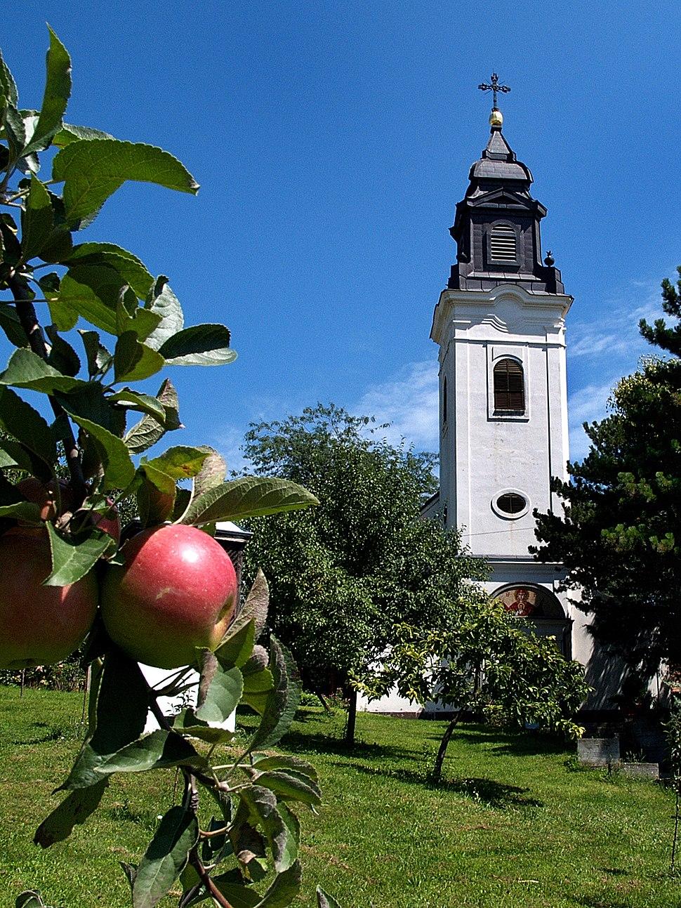 Pravoslavna-crkva-indjija