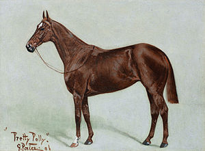 Pretty Polly (horse) - Pretty Polly (George Paice, 1906)