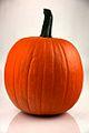 Pumpkin 2 - Evan Swigart.jpg