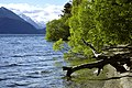 Queenstown-Lakes 14.jpg