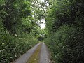 Quiet Road Leading to my House - geograph.org.uk - 1969348.jpg