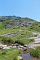Réserve Naturelle de Passy - panoramio (25).jpg
