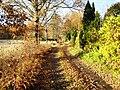 Rönnbärsvägen i Mälby.jpg