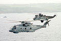 ROYAL NAVY Merlin and Seaking Helicopters MOD 45138891.jpg