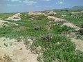 Rabat Medes 1.jpg