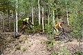 Racing in Breck.jpg