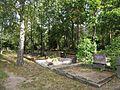 Rahumäe kalmistu vaade.jpg