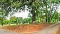 Randolph Cemetery-01.jpg