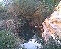 Ras al Helal waterfalls 5.jpg