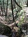 Raymondskill Falls - Pennsylvania (5678047986).jpg