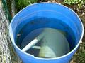 Recyclage eau pluie.png