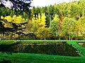 Reflection - panoramio (20).jpg