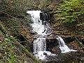 Ricketts Glen State Park Tuscarora Falls 4.jpg