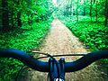 Ride 2.jpg
