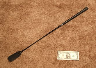 Whip - A type of whip known as a riding crop pictured with a U.S. dollar bill for size comparison.
