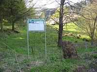 Ritterstein 46 Tiergarten.JPG