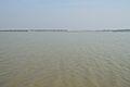 River Ichamati - Debhata - Bangladesh-India 2015-01-13 4426.JPG