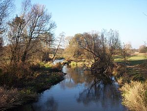Rawka (river) - Rawka river in Dolecko