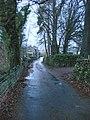 Road to Barley Bridge - geograph.org.uk - 1616513.jpg