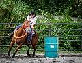 Rodeo in Panama 36.jpg