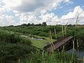 Rokach river1.JPG