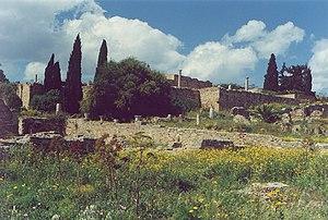 Roman Carthage - Roman villas, Carthage