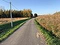 Route Marillat - Saint-Cyr-sur-Menthon (FR01) - 2020-10-31 - 2.jpg