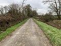 Route Petits Poissons St Jean Veyle 2.jpg