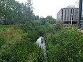 Rye River at Maynooth University.jpg