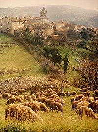 Saint-Andéol-de-Berg (Ardèche - France).JPG