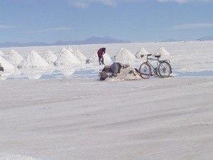 Llica Municipality - A farmer is digging salt on the Salar de Uyuni