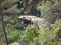 Saltant de la Buixa, Òdena (maig 2012) - panoramio.jpg