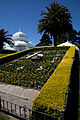 San Francisco Conservatory of Flowers-2.jpg