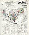 Sanborn Fire Insurance Map from Tampa, Hillsborough County, Florida. LOC sanborn01352 006-1.jpg