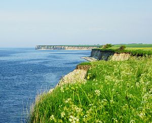 Cliffs of Sangstrup - Coastal Lime Cliffs, facing the sea, Kattegat, between Denmark and Sweden
