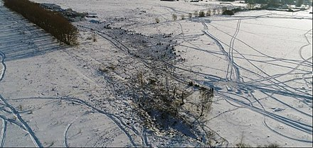 The crash site of Flight 703 Saratov 703 crash site.jpg