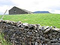 Scalaber's Barn and Pen-y-ghent - geograph.org.uk - 710313.jpg