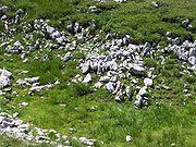 Schneeberg-rocks2.jpg