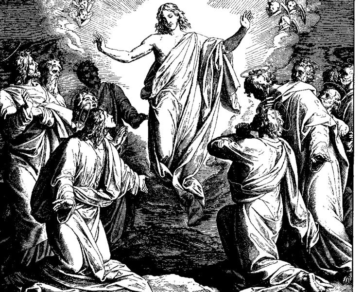 File:Schnorr von Carolsfeld Bibel in Bildern 1860 225.png