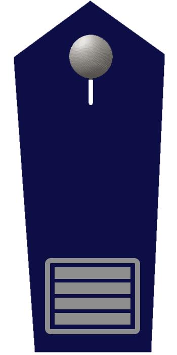 Brandamtsrat/-rätin