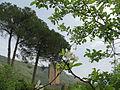 Scorcio panoramico dai giardini di Ninfa.JPG