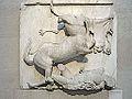 Sculptures du Parthénon (British Museum) (8706164801).jpg