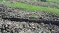 Sevaberd Fortress ruins (145).jpg